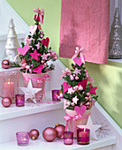 Picea glauca 'Conica' (Zuckerhutfichten) mit rosa Filzherzen
