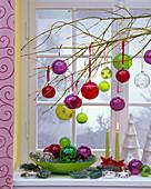 Zweig von Cornus (Hartriegel) im Fenster geschmückt mit Weihnachtsbaumkugeln