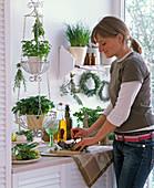 Küche mit Kräutern auf Wandregal, im Hängekorb und auf Anrichte