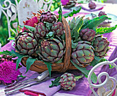Cynara scolymus (vegetable artichokes)