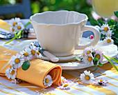 Bellis (Gänseblümchen) in kleinem Strauß und Serviettenring um gelbe Serviette