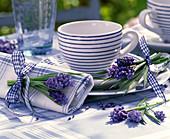 Muscari (Traubenhyazinthen) an gestreifter Tasse, blau-weiß karierte Serviette