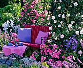 Gartenbank vor Rosenlaube : Querformat