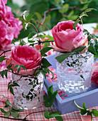 Blüten von Rosa (Rosen) in mit Tortenspitze beklebten Gläsern