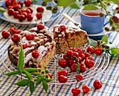 Gedeckter Kirschkuchen mit Prunus (Kirschen) auf Kuchengitter, Teetasse, Rubus