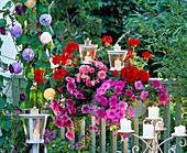 Abendbalkon mit Windlichtern und Kerzen, Petunia (Petunien)
