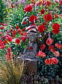 Buddha -Figur zwischen Dahlia (Dahlien), Pennisetum 'Rubrum'