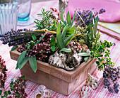 Gesteck aus Lavandula (Lavendel), Salvia (Salbei), Rosmarinus (Rosmarin)