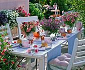Tischdekoration mit Antirrhinum (Löwenmäulchen), Bacopa (Schneeflockenblume)