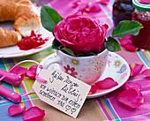 Rosa (Rose) in Espressotasse mit Schild