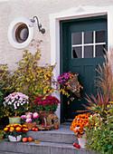 Hauseingang dekoriert mit Chrysanthemum (Herbstchrysanthemen)