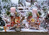 Kerzen in sternförmigen Kerzenhaltern gefüllt mit Abies (Tanne), Pinus