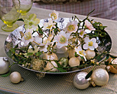 Helleborus niger (Christrosen), Christbaumkugeln als Vasen