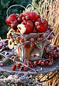 Gesteck mit Malus (Zieräpfeln, Äpfeln, Apfelscheiben) in Gefäß aus Holz