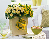 Primula (Frühlingsprimeln, gefüllt, Duft nach Veilchen)