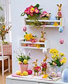 Primula (Frühlingsprimeln, Schlüsselblume), Scilla (Blausternchen), Blüten
