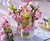 Windlicht aus zwei ineinandergestellten Gläsern mit Prunus (Zierkirsche)