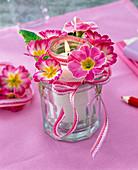 Windlicht aus zwei ineinandergestellten Gläsern mit Blüten von Primula