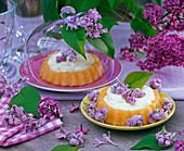 Gezuckerte Blüten von Syringa (Flieder) auf kleinen Torten, Glashaube