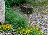 Gestaltung Gartenarchitekt Mumme : ein Künstlergarten reift