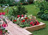 Terrassenbeet mit Holzeinfassung 5 mal anders