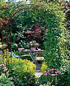Blick durch Rosenbogen mit Clematis (Waldrebe) auf Sitzplatz