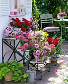 Pflanzentreppe mit Balkonblumen