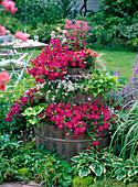 Faßturm bepflanzt mit Balkonblumen