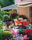 Terrasse mit Kübelpflanzen, Markise als Sonnenschutz