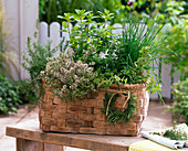 Plant the herb basket
