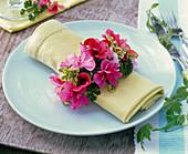 Serviettenring aus Pelargonium (verschiedenen Geranien) um Serviette