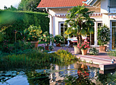 Teich grenzt an Terrasse mit Kübelpflanzen