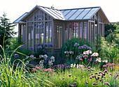Teehaus mit Agapanthus africanus (Afikanischen Schmucklilien)