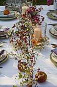 Gedeckter Tisch vor Herbstbeet : Girlande aus Clematis vitalba