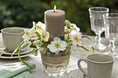 Kerze mit Anemone japonica (Herbstanemone)