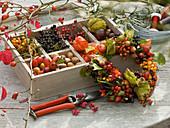 Gesammelte Herbstfrüchte und Beeren in Holzkiste