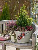 Erica gracilis 'Beauty Queen Silvia' (Topferika), Ilex aquifolium