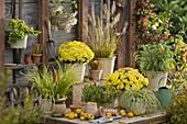 Herbstzauber in gelb