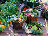Körbe mit Gemüse