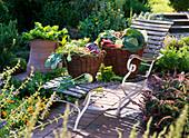 Körbe mit Gemüse auf Gartenliege