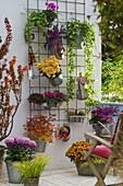 Vorher - Nachher - Balkon mit Baustahl - Gitter : Herbstaspekt