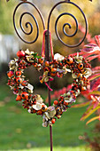 Herz aus Rosa (Hagebutten), Hydrangea (Hortensienblüten)