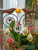 Vogelfutter am Eisenstab mit Vögeln