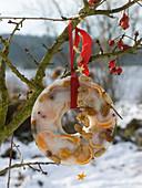 Selbstgemachte Winterdeko : Orangenscheiben und Nüsse eingefroren