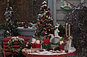 Weihnachtsbalkon mit Picea glauca 'Conica' (Zuckerhutfichten)