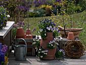 Taschenamphore bepflanzt mit Viola cornuta (Hornveilchen)
