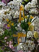 Blecheimer mit Narcissus 'Tete a Tete' (Narzissen) und Triticum