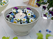 Frühlingskranz aus Viola cornuta (Hornveilchen), Bellis (Tausendschön)