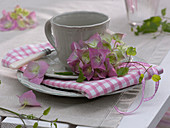 Rosa Blüte von Hydrangea (Hortensie) und kleine Ranke von Clematis