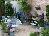 Terrasse mit blauen Pflanzen